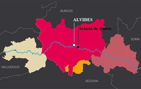 Bodega Alvides 5 Km from Aranda de Duero